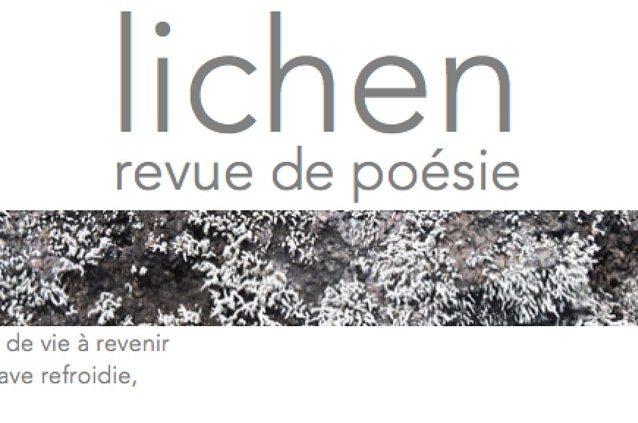 Florentine Rey - revue lichen n° 7