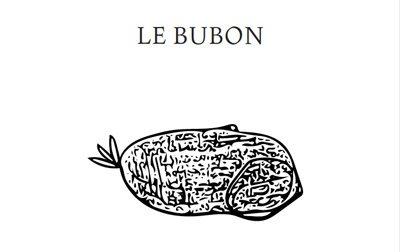 Florentine Rey, Parution du livre Le Bubon, couverture